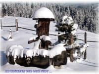 Hausbrunnen Farhenigg