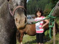 Pony Sissi undMax
