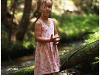 Im Wald gibt es viel zu entdecken