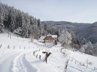 Zufahrt im Winter