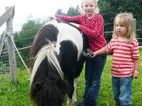 unser Pony Maxi