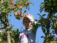 Apfelmädchen