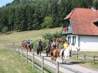 Reiturlaub am Mentehof