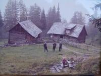 anno 1880