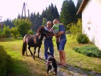 Pony Majia