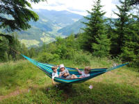 Hammock on the alpine pasture