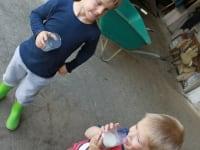 frische Milch direkt von der Kuh, mhhh lecker :)