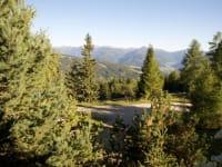die Frido Kordon und die Sonnalmhütte stehen mitten in einer Waldlichtung