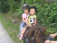 ganz Gross auf Pony