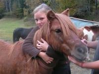 Pony mit Anna