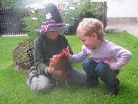 bin ein gl?ckliches Huhn
