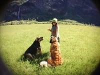 Unsere Haushunde mit Maria