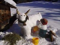 Schneekuh mit Bäurin