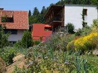Blick über den Kräutergarten_Ostseite