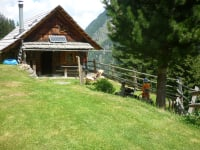 unsere Hütte auf der Alm