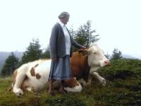 meine Oma mit Kuh Liesa