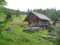 Seitenansicht der Hütte mit Grillplatz und Almwiese