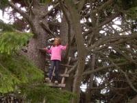 Julia im Baum