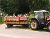 Traktortaxi