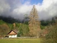 Ferienhaus II - Herbst