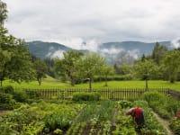 Der Hausgarten