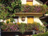 Blumen am Ferienhaus