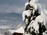 Winter am Hoferhof