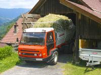 Hier wird Heu eingelagert, damit die Kühe im Winter was zu fressen haben