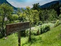 Naschgarten - viele Kräuter und Gemüse