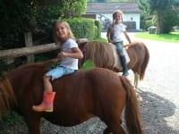 am Rücken der Pferde...liegt das Glück dieser Erde