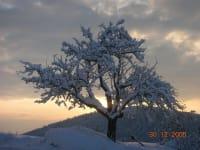 stimmungsbild winter urlaub