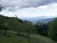 Blick über die Wiesen ins Tal