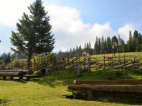 Sitzgelegenheit aus Holz
