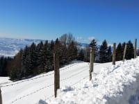 Winterlandschaft 2015