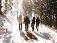 Winterspaziergang durch den Wald