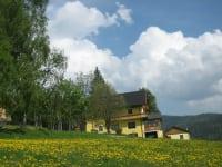 Gasthaus Pension-Langhans