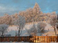 Winterruhe