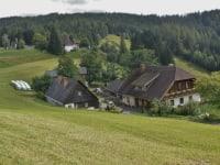 Bauernhof-Hanslbauer