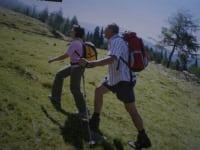 Almwanderung