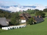 Hof-Hanslbauer