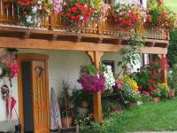 Balkon im Sommer