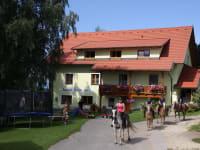 Sommer am Bauernhof Pension Juri