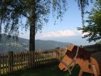Holzpferd Hektor genießt den Ausblick