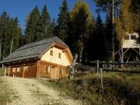 Hütte mit Baumhaus