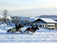 Reiten im Schnee