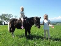 Kinder beim Ponyreiten
