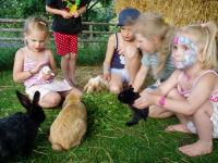 Kinder im Hasenstall