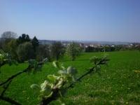 Blick auf Allhartsberg