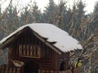 Biohof Haunschmid-Natur im Garten