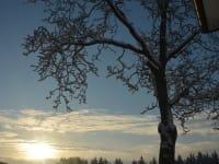Biohof Haunschmid-Sonnenaufgang